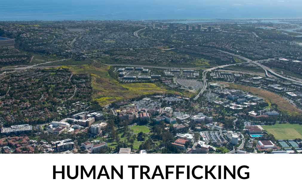 Human Trafficking research overview