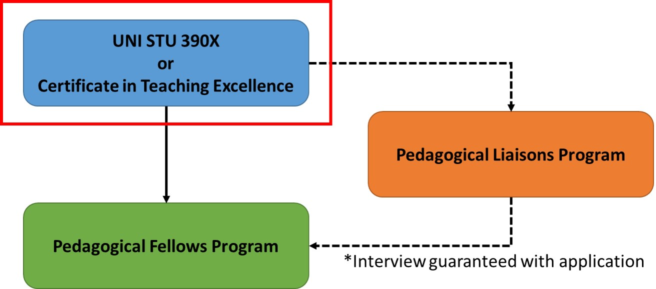 A flowchart of the professional development opportunities at the DTEI emphasizing the Certificate in Teaching Excellence