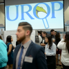 UROP Special Calls for Proposals